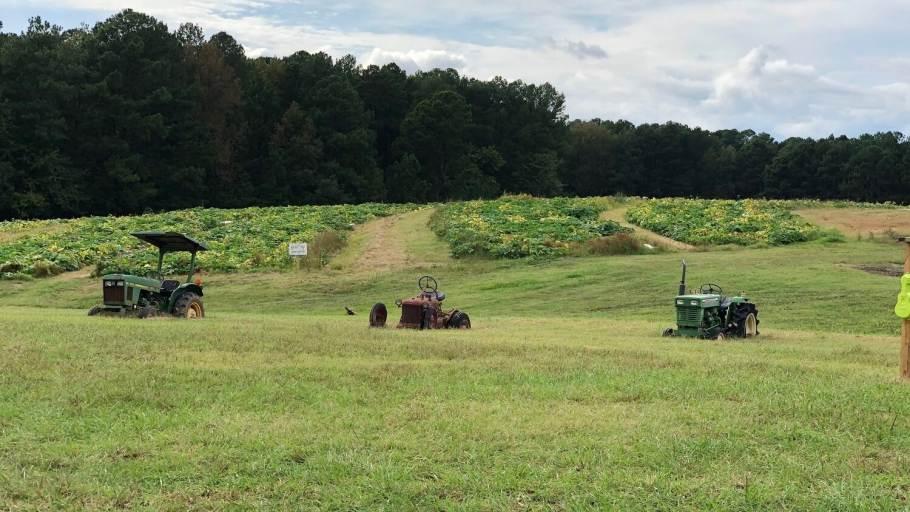 Holder Hill Farm